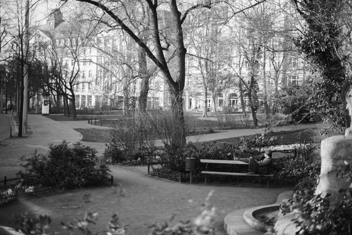 Johannes-Thon-Der-Mann-im-Park